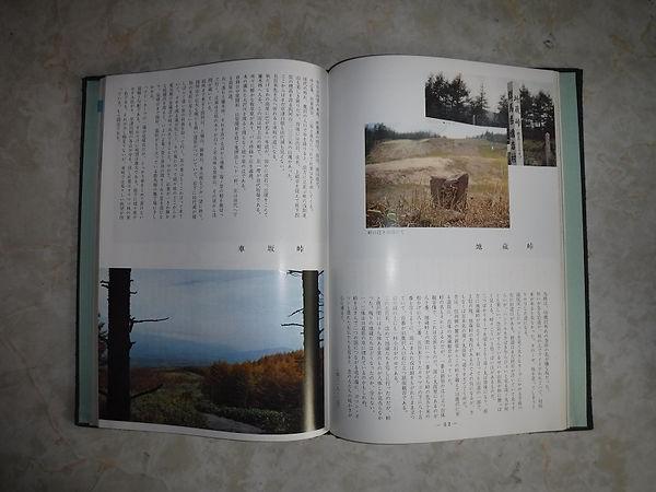 群馬の峠2.JPG