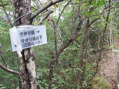 20161010_鹿沼岩山11.jpg