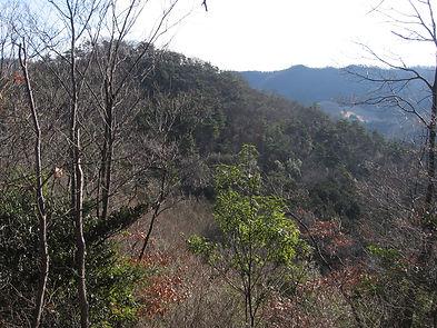 20170119_板倉町から行道山05.jpg