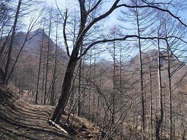 20190418_ローソク岩02.jpg