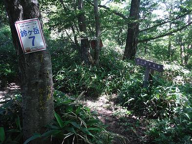 20160711_鈴ヶ岳04.jpg