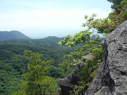 20160711_鈴ヶ岳10.jpg
