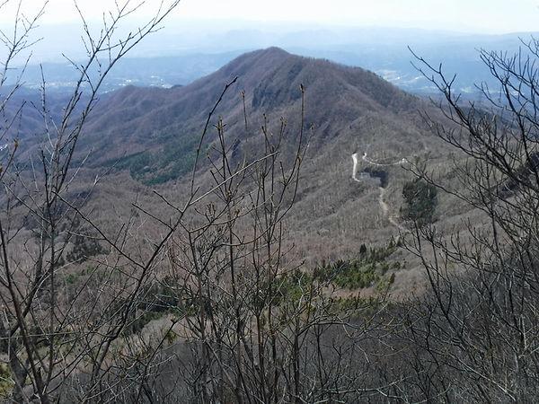 20200406_掃部ヶ岳と杏ヶ岳05.jpg