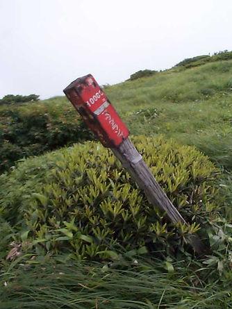 谷川岳指導標.jpg