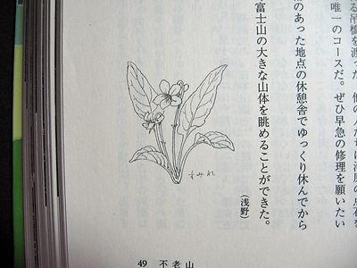 関東百山03.jpg
