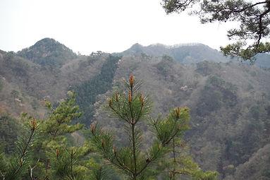 20150416_朝日沢鉱山跡から仙人ヶ岳17.jpg