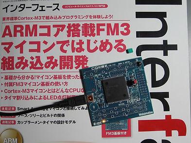 FM3_1.jpg