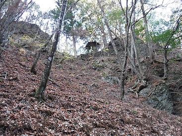 20181121_根本山09.jpg