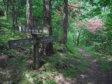 20160523_諏訪山10.jpg