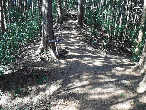 20210221_天覚山と大高山08.jpg