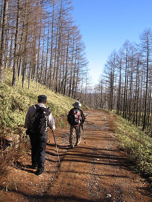 20131130_赤倉山05.jpg