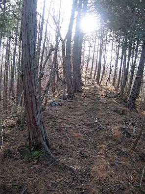 20180115_金原山03.jpg