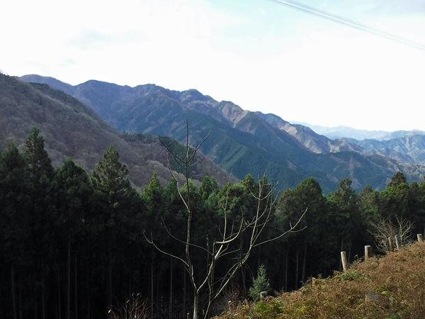20201214_若御子山と大反山08.jpg