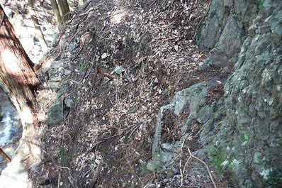 20150416_朝日沢鉱山跡から仙人ヶ岳05.jpg