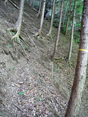 20160604_大岩焼山04.jpg