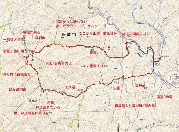 20210401_西吾野から伊豆ヶ岳01.jpg
