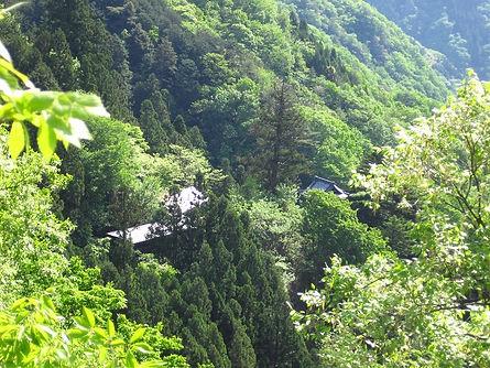 黒滝山1.jpg