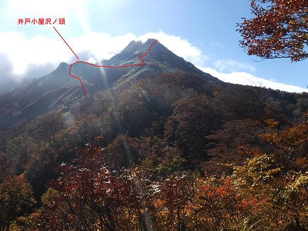 20201021_万太郎06.jpg
