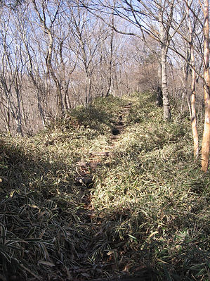20141206_赤城銚子の伽藍7.jpg