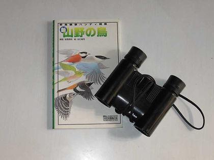 野鳥ガイドw.jpg