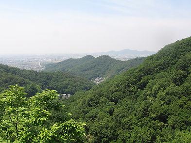 20140602_両崖山4.jpg