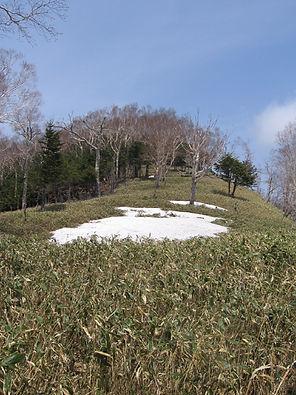 20140524_大平山14.jpg