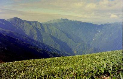 平ヶ岳15.jpg