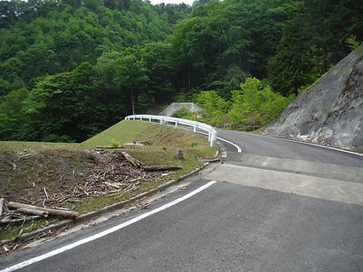 20160604_大岩焼山16.jpg