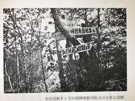 忘れさられた道を探る01.jpg