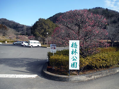 20160218_諏訪岳_唐沢山03.jpg