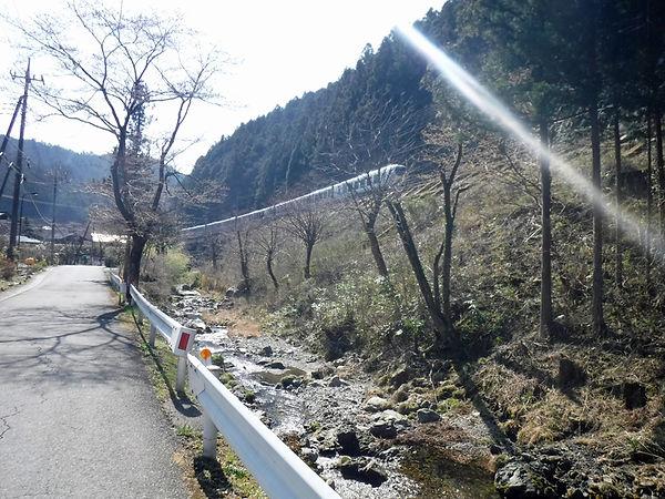 20210324_西吾野からブナ峠02.jpg