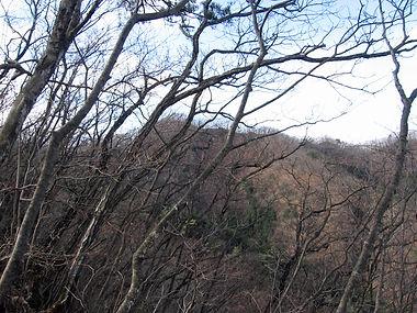 20180115_金原山04.jpg