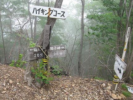 仙人ヶ岳パートII_10.jpg