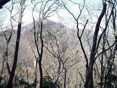 20180304_伊豆ヶ岳05.jpg