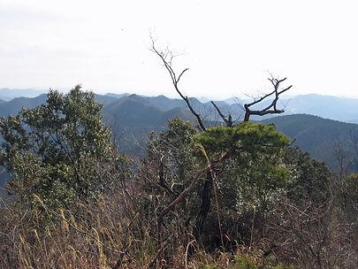 20180115_金原山09.jpg