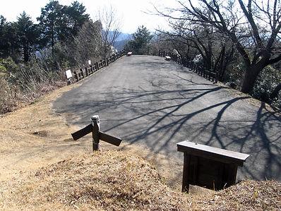 20170123_大岩山_野山08.jpg