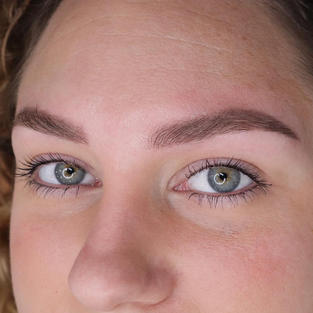 Healed ombre powder brows
