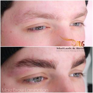 male brow lamination