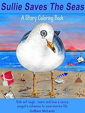 seagull plastic pollution book cover