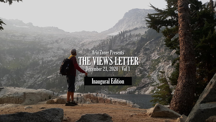 The Views Letter Newsletter by Aria Zone
