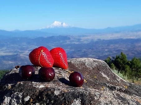 Whole Food Hiker - Soda Mountain - by Ar