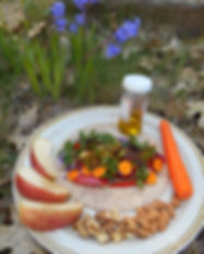 Whole Food Hiker snack plate