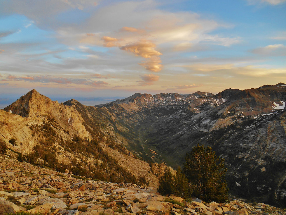 The Nevada Trail - by Aria Zoner.JPG