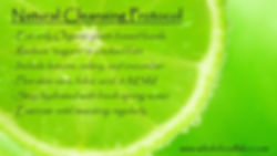 Natural Cleansing Protocol