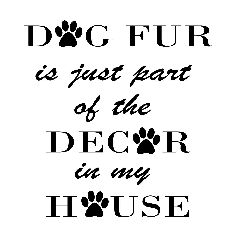 PET10: Dog fur