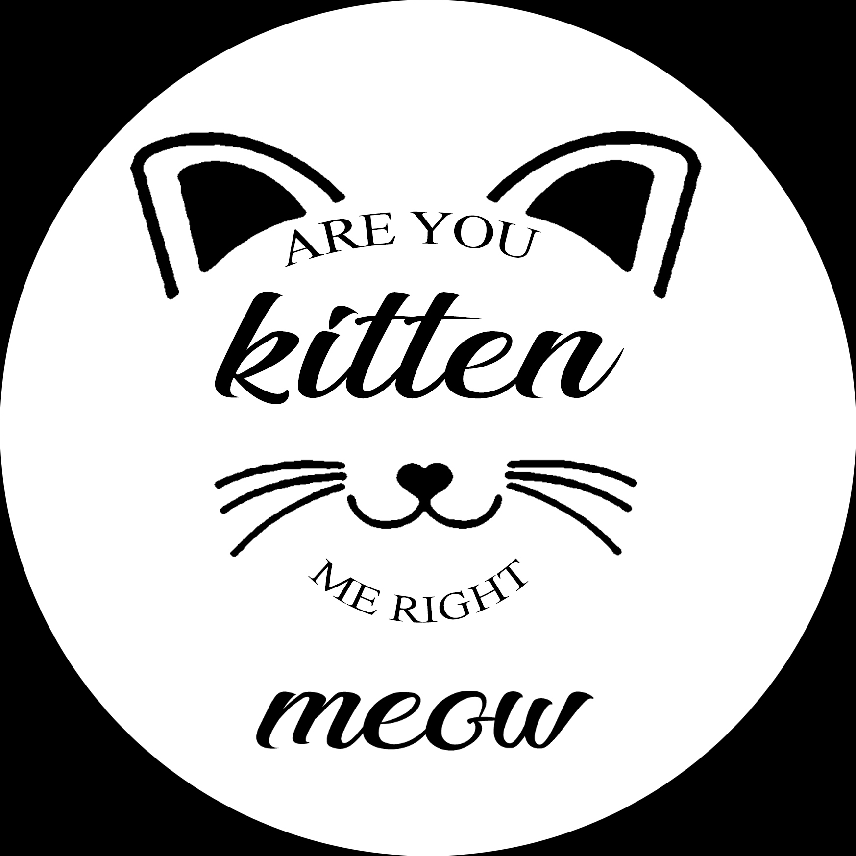 PET11: Are you kitten me