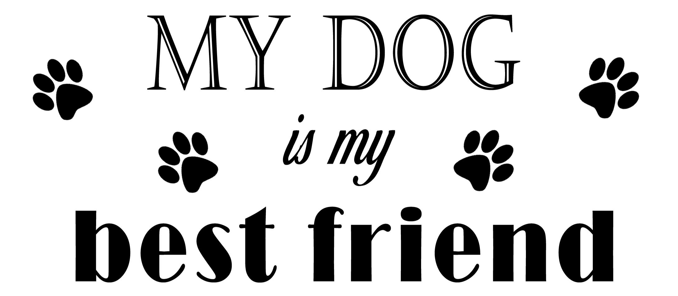 PET14: My Dog is my best friend