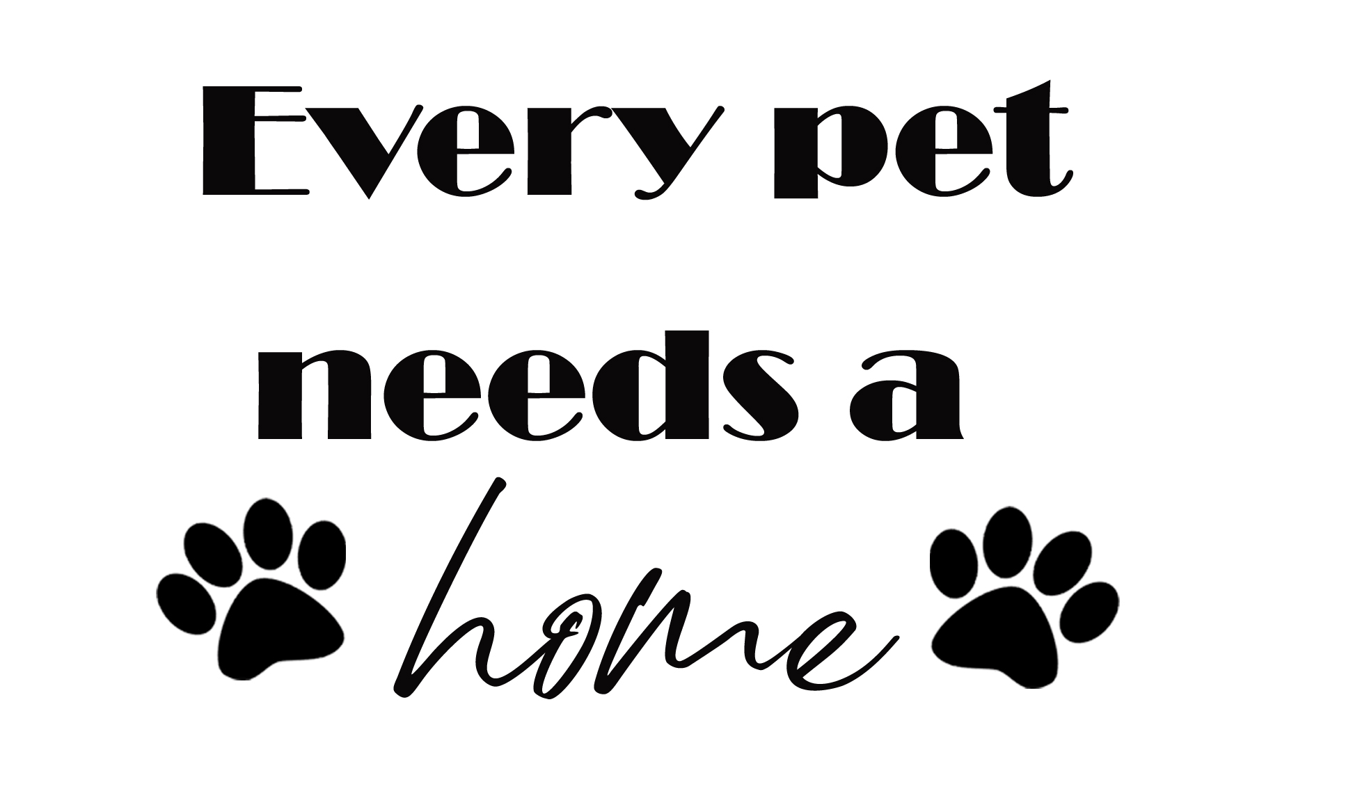 PET5: Every home needs a pet