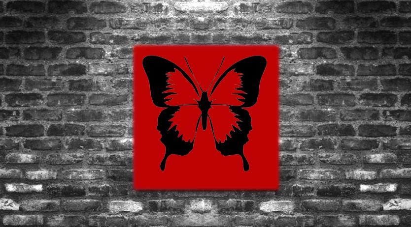 K2: Butterfly