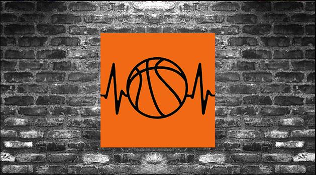 K9: Basketball